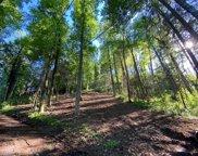510 Wild Ivy Way, Gatlinburg image