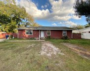 6715 N Willow Avenue, Tampa image