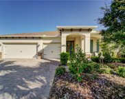11524 Lake Lucaya Drive, Riverview image