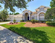 4321 Waterford Landing Drive, Lutz image
