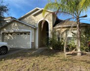 2921 Trinity Cottage Drive, Land O' Lakes image