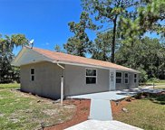 7269 Toucan Trail, Spring Hill image