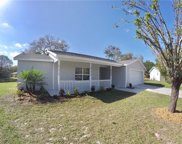 12807 Slippery Elm Court, Riverview image