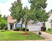 433 Silver Cypress  Lane, Fort Mill image