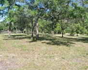 00 COUNTY RD 209  S, Green Cove Springs image