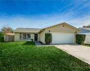 3720 Mccloud Street, New Port Richey image