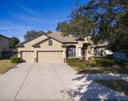 12706 Charity Hill Court, Riverview image