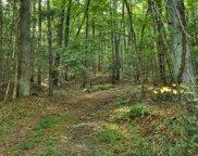 14 AC Doublehead Gap Rd, Blue Ridge image