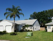 339 Phlox Drive, Palm Harbor image