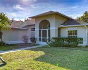 1012 Standing Reed Place, Wesley Chapel image