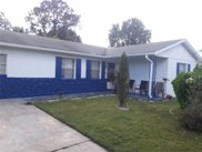 4632 Calendula Drive, Orlando image