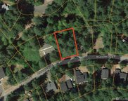 22248 Bluewater Dr SE, Yelm image