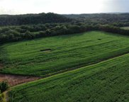 35.46 Acres O'Donoghue Road, Morristown image