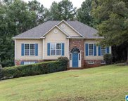 20 Birch Tree Court, Odenville image