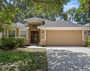 4610 Whispering Wind Avenue, Tampa image