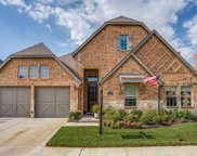 3717 Birmington, The Colony image