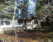 7704 Atchinson Dr SE, Olympia image