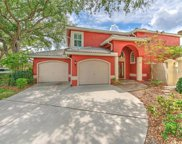 504 Haverhill Lane, Safety Harbor image