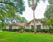 1595 Rockwell Heights Drive, Deland image