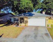 1809 Citrus Hill Lane, Palm Harbor image
