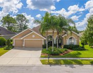 23346 Gracewood Circle, Land O' Lakes image