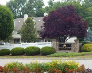 197 Willow  Springs Unit 197, New Milford image