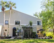 3590 Whispering Oaks Ln Unit 310, Palm Harbor image
