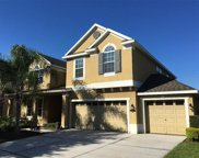 19311 Yellow Clover Drive, Tampa image