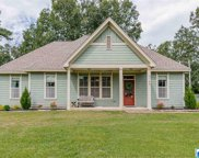 3165 Smith Sims Rd, Trussville image