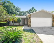 1833 Willow Oak Drive, Palm Harbor image