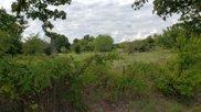 10 Creekview Ranch, Argyle image