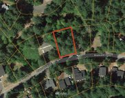 22248 Bluewater Drive SE, Yelm image