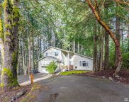 7927 Dunlin Ct SE, Olympia image