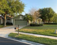23704 Coral Ridge Lane, Land O' Lakes image
