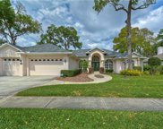 2408 Valrico Forest Drive, Valrico image