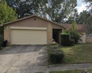 4412 Lurline Circle, Tampa image