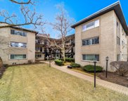 1325 West Birchwood Avenue Unit 2F, Chicago image