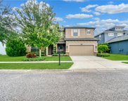 8229 Mallow Mirror Lane, Land O' Lakes image