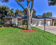 2029 Sparkling Waters Way, Spring Hill image