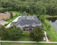 6113 Wild Orchid Drive, Lithia image