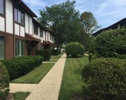 1811 Henley Street Unit #A, Glenview image