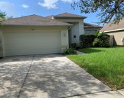 4777 Whispering Wind Avenue, Tampa image