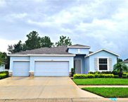 13897 Blythewood Drive, Spring Hill image