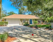 14903 Northwood Village Lane, Tampa image