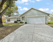 904 Elm Forest Drive, Minneola image