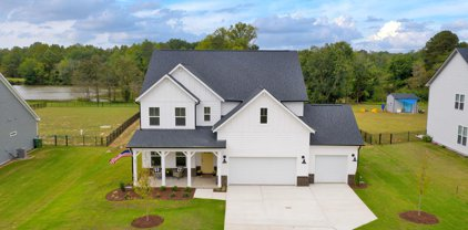7316 Cabernet Franc Drive, Willow Spring(s)
