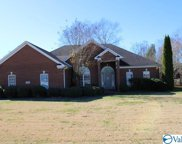 102 River Downs Drive, Huntsville image