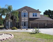 9135 Pine Island Road, Clermont image