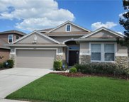 4144 Knollpoint Drive, Wesley Chapel image