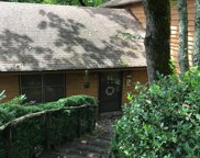 1115 Cold Mountain Road, Lake Toxaway image